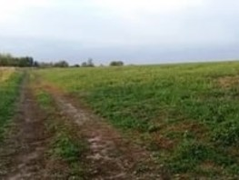 Участок, 46000  сот., Земля сельхозназначения