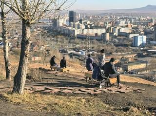 Озеленение в Красноярске: проблемы и решения