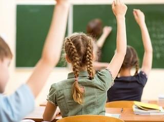 В «Новоостровском» собираются построить школу-гигант