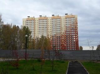 Новый год в новой квартире ЖК «Радонежский»