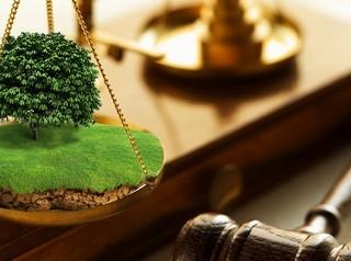 В октябре на торги выставят семь земельных участков в Красноярске