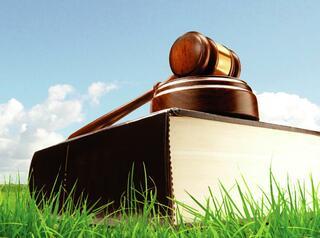 На сентябрьском земельном аукционе в Красноярске выставят 10 земельных участков
