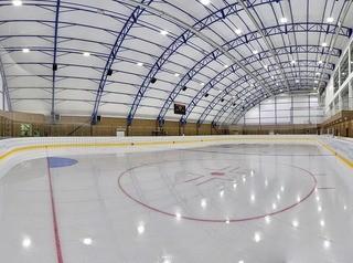 На подготовку проекта ледового дворца в Рабочем объявили повторный аукцион