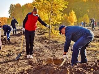 Сквер «Зеленая река» в центре будущего жилого района заложили в Омске