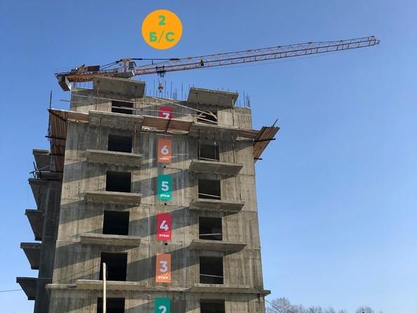 Ход строительства 31 января 2019