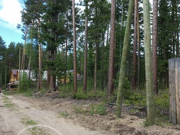 Продам  земельный участок, 800 соток, Горячинск. Фото 2.
