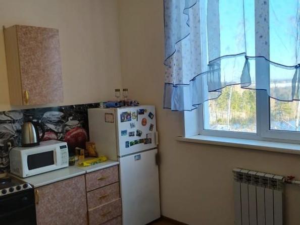 Продам 1-комнатную, 36.1 м2, Березовый мкр, 104. Фото 2.