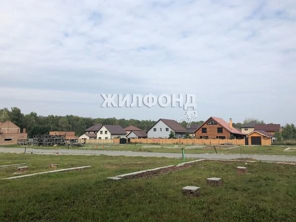 Продам  земельный участок, 11 соток, Садовый. Фото 4.