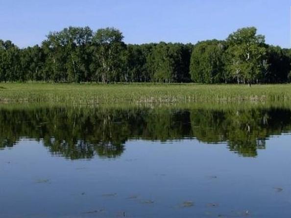 Продам  участок ИЖС, 10 соток, Карасево. Фото 1.